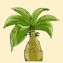 cartoon palm tree with a thick trunk