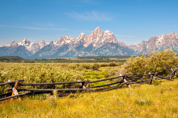 Wall Mural - Grand Tetons