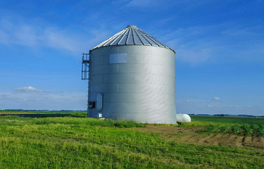 Metal silo on farmland in Central Illinois. Blue sky in the background.
