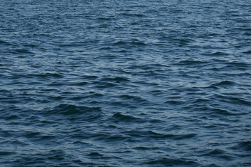 Ripples on sea surface
