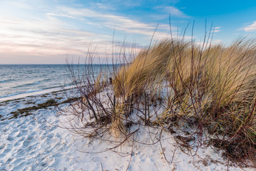 Sand dunes on the beach of Baltic Sea. Hel Peninsula. Poland.