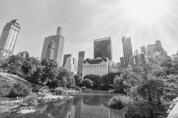 Central park with skyline of Manhattan in background