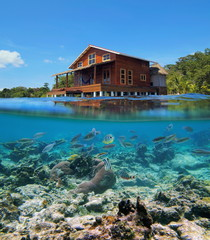 Above and below sea surface tropical stilt house over water with fish on coral reef underwater, Caribbean