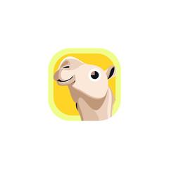 Cute Camel App Icons Logo Vector