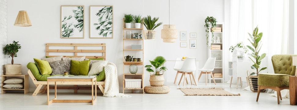 Spacious green living room