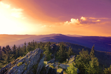 Summer landscape at sunset in National park Bayerische Wald,