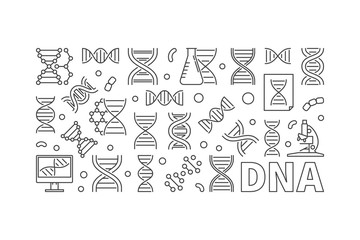 Vector DNA horizontal banner or linear illustration