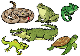 set of reptile cartoon illustration