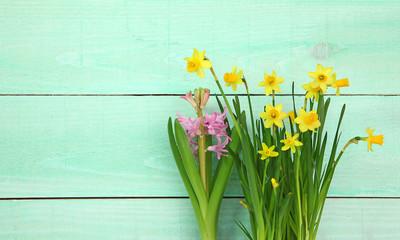 Narcisses sur fond de planches vertes