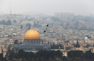 Birds fly on a foggy day near the Dome of the Rock, located in Jerusalem's Old City on the compound known to Muslims as Noble Sanctuary and to Jews as Temple Mount