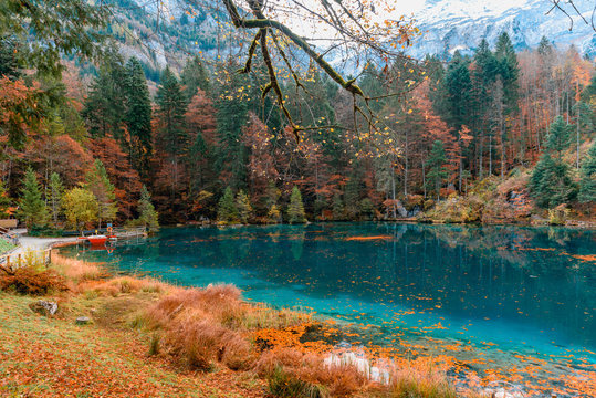 Beautiful crystal clear water at best-know Blausee lake in Kandersteg, Switzerland during autumn season
