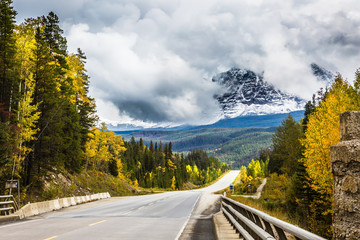 "The astonishing road 93 ""Icefields Parkway"""