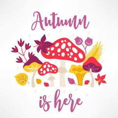 Autumn greeting card with mushroom, leaves, flower, branches