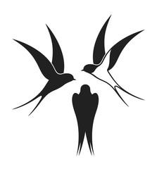 Swallow logo. Isolated swallow on white background
