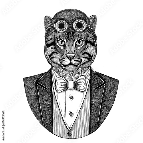 f07fbe307 Wild cat Fishing cat Animal wearing aviator helmet and jacket with bow tie  Flying club Hand
