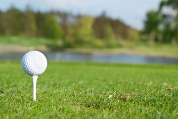 Golf ball on the tee, golf course of Adare in Ireland