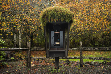 Telephone booth in forest during autumn