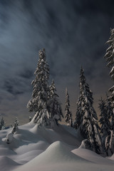 Low angle view of snow covered trees against cloudy sky at night