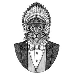 Wild cat Fishing cat Wild animal wearing inidan hat, head dress with feathers Hand drawn image for tattoo, t-shirt, emblem, badge, logo, patch
