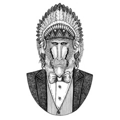Monkey, baboon, dog-ape, ape Wild animal wearing inidan hat, head dress with feathers Hand drawn image for tattoo, t-shirt, emblem, badge, logo, patch