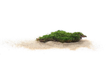 Green moss and pile sand isolated on white background