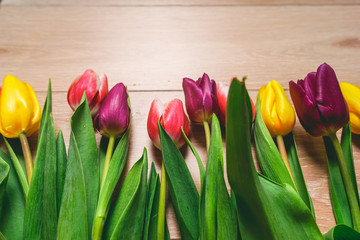 Multicolored tulips on the table