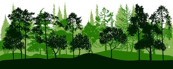 Wall Murals Green vector landscape with pine trees