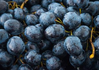 Bunch of vine grapes or Berlandieri grape pattern