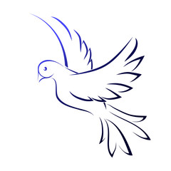 Image of a dove, vector. Flying bird, lines