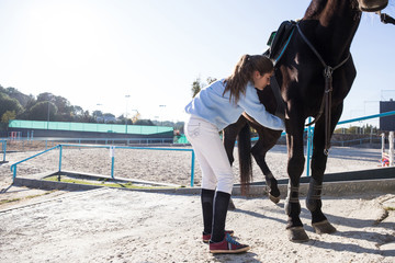 Young girl putting equipment while preparing horse to ride on the stable.