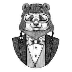 Panda bear, bamboo bear wearing jacket with bow-tie and biker helmet or aviatior helmet. Elegant biker, motorcycle rider, aviator. Image for tattoo, t-shirt, emblem, badge, logo, patches
