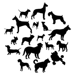 Set of black dogs on a light background