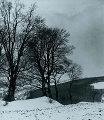 World War 1 - View of a winterly country side