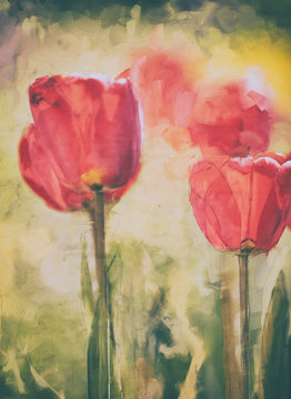 art watercolor tulip spring painting, red, green and yellow dominant colors, oil digital paintings