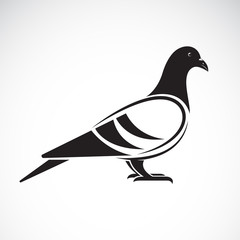 Vector of a pigeon design on white background. Bird. Animals. Vector illustration.