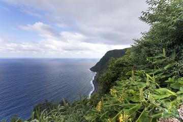 Coastline view of Sao Miguel Island, Azores - Portugal