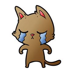 crying cartoon cat