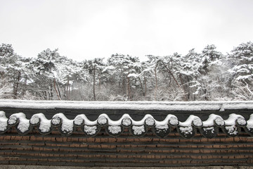 snow covered Korean traditional roof tile and snow covered trees