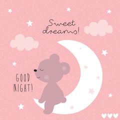 cute teddy bear animal on the moon vector illustration