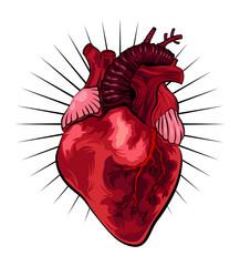 Human heart in tattoo style. Vector illustration