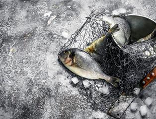 Fresh unprepared Dorado fish in an old bucket with fishing net.