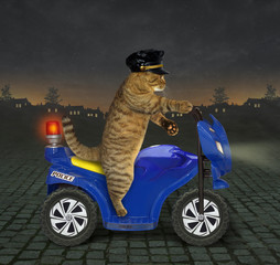 Cat policeman on a motorbike 2
