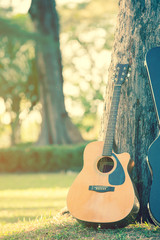 guitar and guitar case  standing with the tree in the park