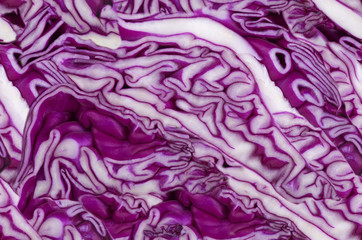 seamless background from red cabbage macro