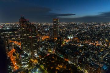 Tokyo night colorful beautiful city in Japan
