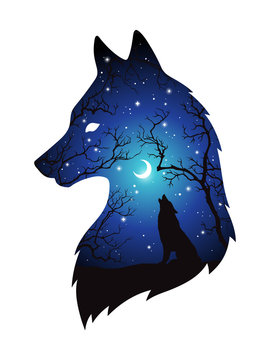 Double exposure silhouette of wolf in the night forest, blue sky with crescent moon and stars isolated. Sticker, print or tattoo design vector illustration. Pagan totem, wiccan familiar spirit art