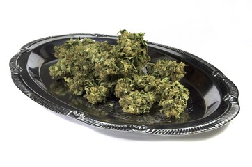 Medical marijuana buds laying on silver plate