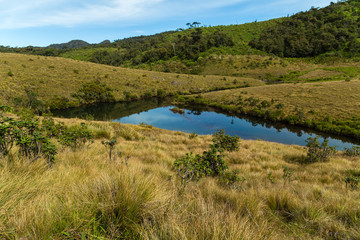 lake from small river, Horton Plains National Park highlands of Sri Lanka and is covered by montane grassland and cloud forest. Ceylon, Asia.