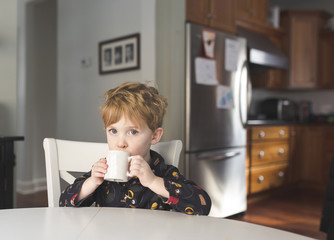 Portrait of boy having drink while sitting on chair at home