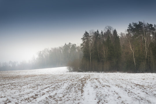 Field in winter with some snow